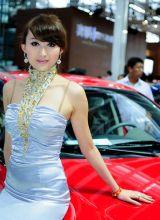 靓丽车模亮相2011北京车展套图