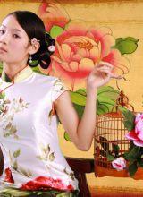 漂亮的旗袍摄影:蝶恋花